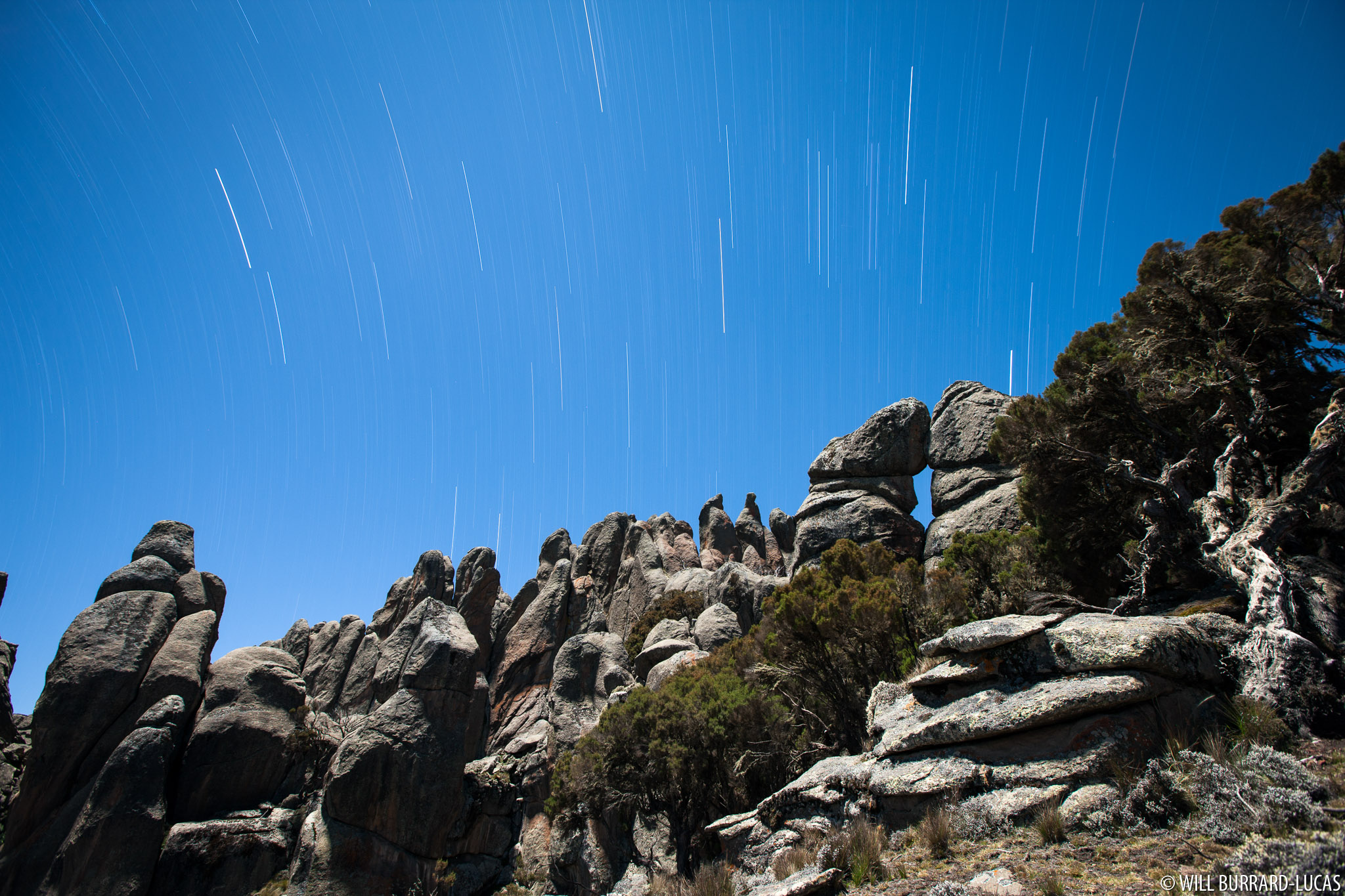 Starlit Landscape | Will Burrard-Lucas
