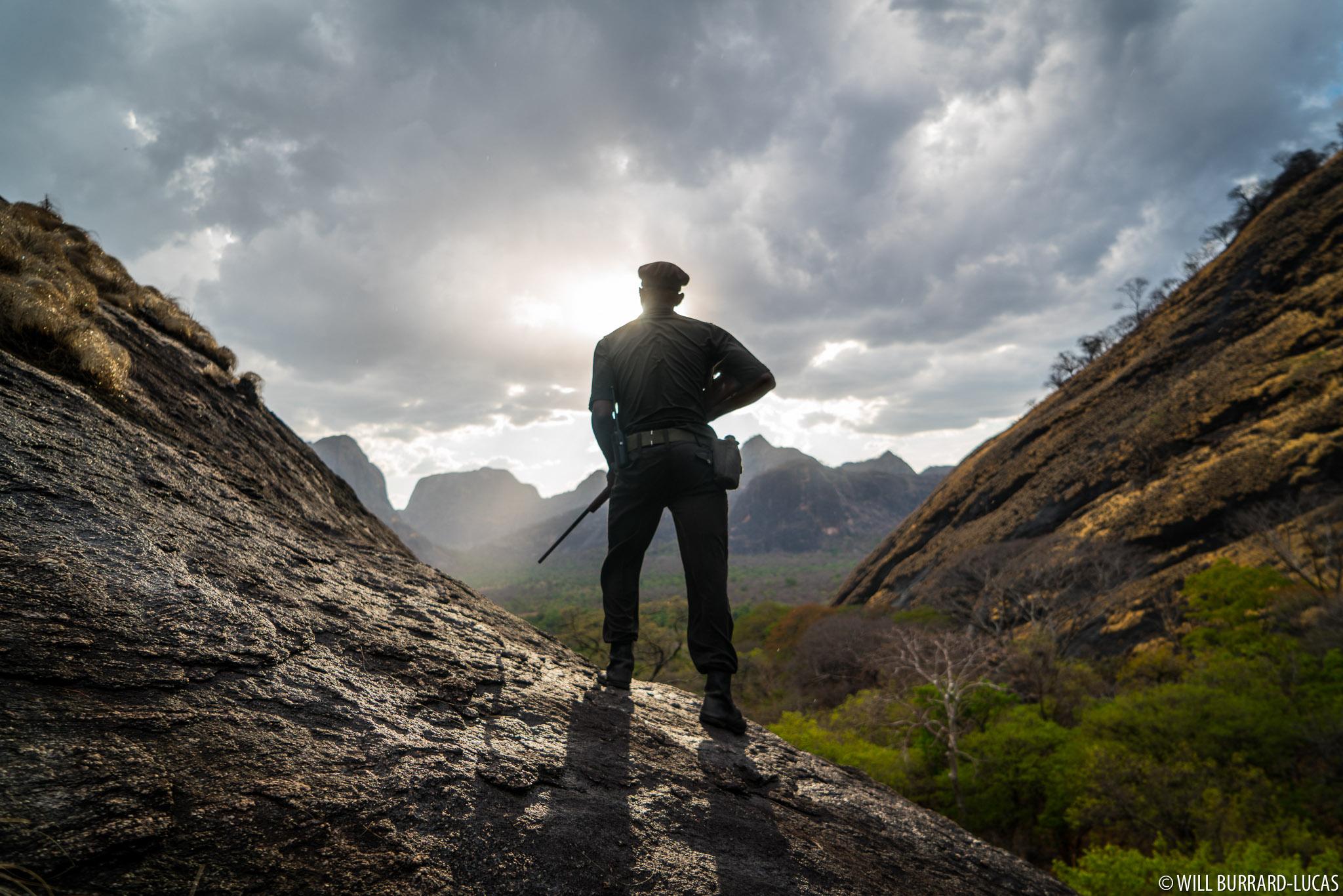 Anti-poaching Ranger | Will Burrard-Lucas